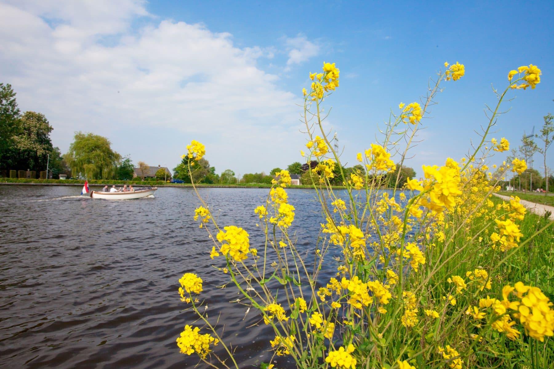 Pact3D-Woningbouw-Zwaaikom-Rijn met bloemen
